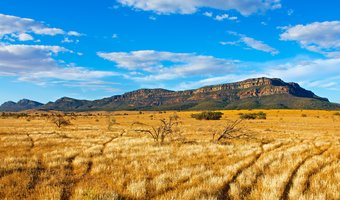 Wilpena Pound Resort & Ikara Safari Camp